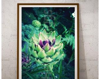 Botanical Wall Art Printable Poster Decor, Nature Backdrop, Food Photography, Kitchen Wall Art, Artichoke Plant, Vegetable Art Print