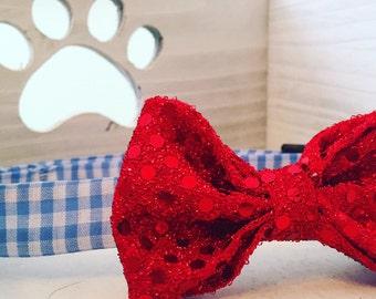 Dogothy Gale Dog Collar