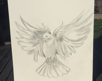 Dove drawing in black and white