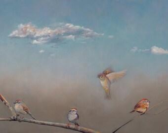Spring Sparrows