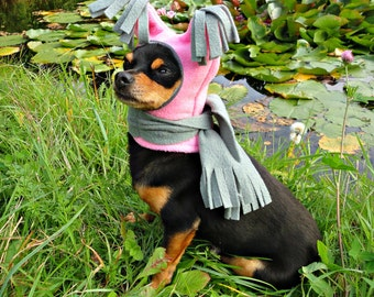 dog winter clothes-dog clothes-dog hat with scarf - dog hat- cute dog hat