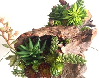 Succulent Arrangement, Artificial Succulent Centerpiece on Driftwood Indoor Outdoor Wood Piece Decor