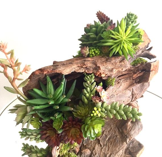 Succulent Arrangement Artificial Succulent Centerpiece On