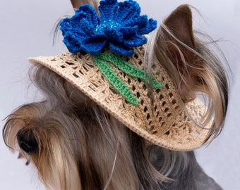 "Hat for Dog ""Cornflower"", Crochet Dog Hat, Doggie Hats, Knit Hats For Dogs, Pet Hats"