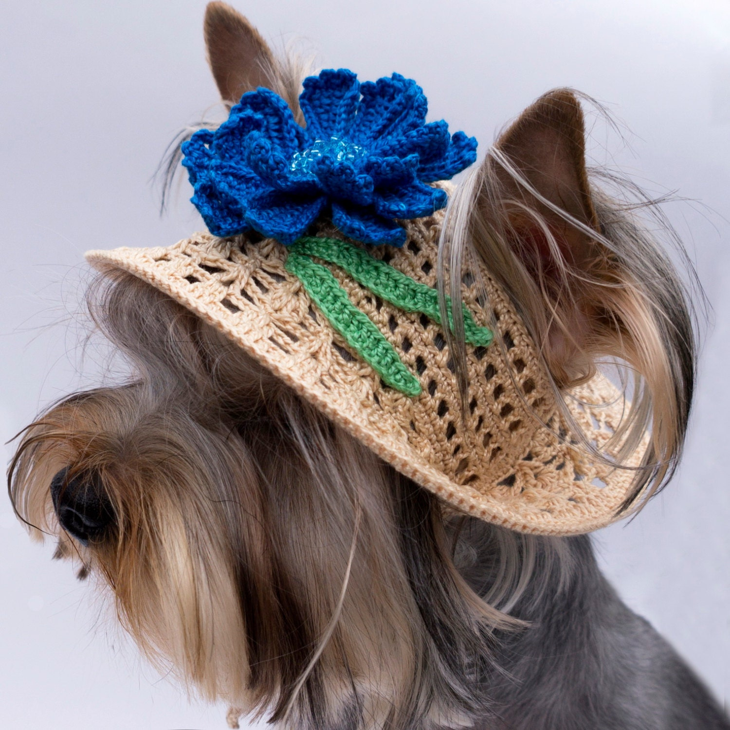 Crochet Pattern Dog Hat Free : Hat for Dog Cornflower Crochet Dog Hat Doggie