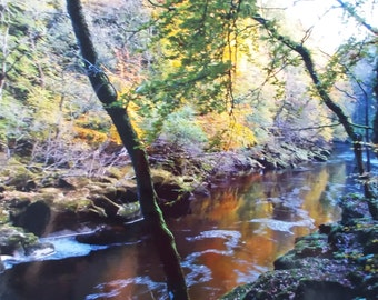Photograph of BOLTON ABBEY in Autumn