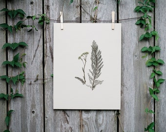 Hand-Pressed Fern and Flower