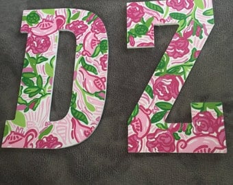 DZ Painted Wall Letters