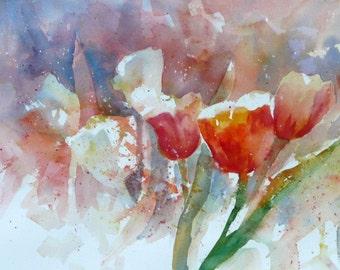 Tulips in Bloom 1