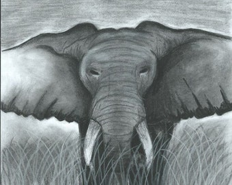 Hand-drawn elephant picture