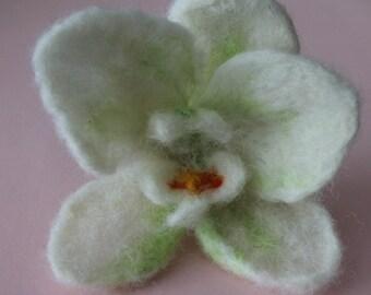 felted brooch / orchidea/ flower brooche /felted  white celadon butted/ big orchidea flower felt / needle felt