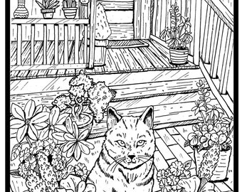 cat coloring book page from JV Creative