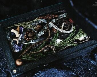 """Secret box """"Neptune"""""""