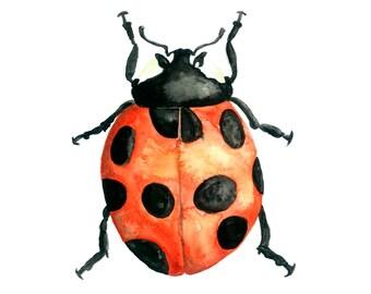 Ladybug Watercolor Print