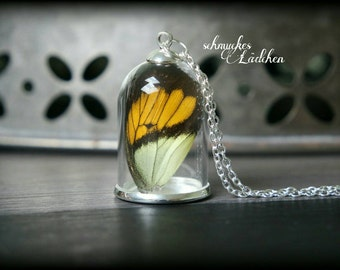 925 Silver Chain glass dome of real butterfly wings