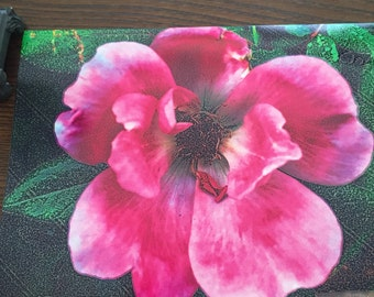 Classic One-of-a-kind Flower Photgraph