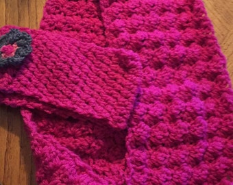 scarf and ear warmer