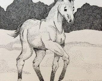 Foal in Snow