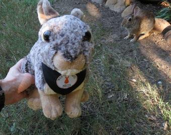 HUGGABLE! Plush Mister Bunny with Custom Wild Texas Buns Bandana - Stuffed Bunny Toy - Bunny Lover Gift - Mister's Garden