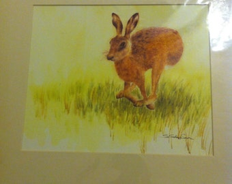 Jumping Hare, mounted print.