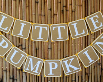 Little Pumpkin Banner, Little Pumpkin, Pumpkin Banner, Fall Banner, Baby Shower, Birthday Banner, Photo Prop, Baby Banner, First Birthday