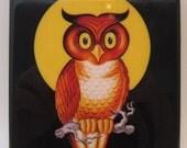 Whooo Owl Halloween Coaster