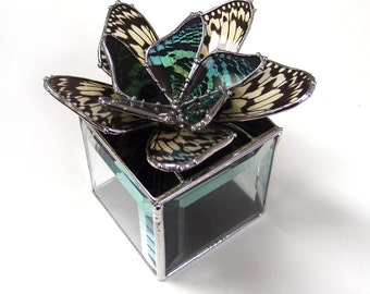 Real Butterflies Stained Glass Box -  Perfect for a Engagement or Wedding Rings, Real Sunset Moth and Paperwhite Butterflies Flower Design