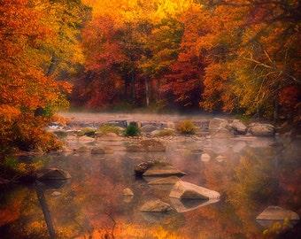 Fall Photography, Wisconsin Landscape, Landscape Decor, Autumn Wall Art, Fall Foliage, Warm Tones, Orange, Nature, Morning