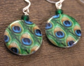 Peacock feather earrings, green, blue, gold on large genuine shell beads and silver handmade earrings