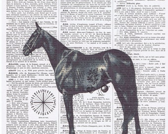 Horse.farm animal.pretty picture.Gift,Altered art,Antique Book Page.Vintage.animal lover,buy 3 get 1 FREE.mane.hooved.paris.french.birthday