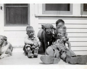 vintage photo 1947 Mary Had Little Lamb & Collie Dog w Kids on Porch