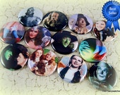 Wizard of Oz Pins, Wizard of Oz Magnets, Wizard of Oz Flatbacks, Oz Pins, Party Favors, Cupcake Toppers, 12 ct. Set A