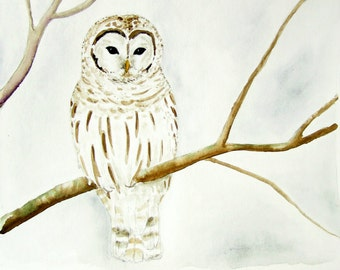 "Watercolor art print 8x10 ""Winter Owl'"" by clarysagemoon"