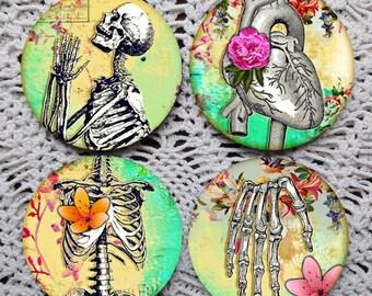 Dem Bones -- Colorful Skeleton Anatomy Mousepad Coaster Set