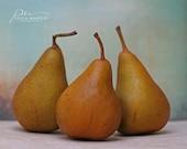 pear photo, kitchen decor, food decor, food photography, kitchen wall art, Food art, pear print, Autumn decor, rustic decor, rustic art