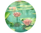 Lotus Flower, Pink, Teal, Pond, Green, Water, Nature Photograph - Circular image on a 8x8 inch Fine Art Print -Dancing in Still