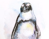 African Penguin Painting Watercolor original bird art
