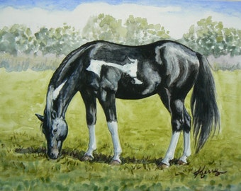 Beautiful Paint horse grazing in a meadow Watercolor 6x8 original equine art by Kerry