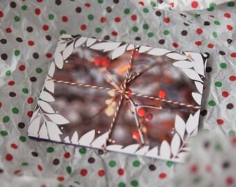 Leaves Postcards