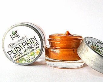 Pumpkin Facial Mask Antioxidants and Enzymes