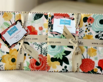 SALE 2 Packs - 5 inch charm pack squares FANCY & FABULOUS by Riley Blake from Fancy Pants Designs