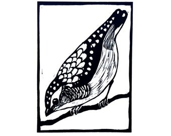 Linocut of Pardalote, Australian Bird Print, Printmaking, Lino Print