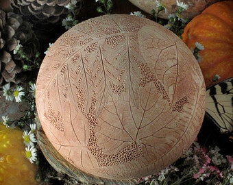 Solstice Sphere with Three Ferns