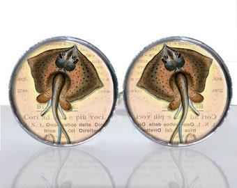 Stingray Round Glass Tile Cuff Links - CIR167