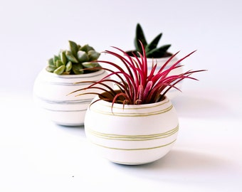 Mini planter for cacti. Ceramic  planter green stripes, succulent planter or air plant planter. Crafted by Wapa Studio.