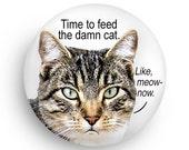 Funny Cat Fridge Magnet, New! From SmirkingGoddess