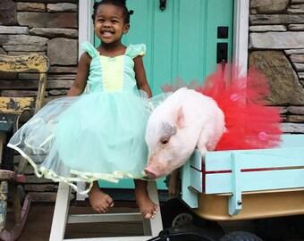Tiana dress  princess Tutu dress for birthday party dress  or portrait or Easter dress