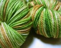 Forest Glen Hand Painted Sock Yarn