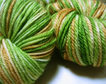 Forest Glen Hand Painted Merino Bulky Yarn