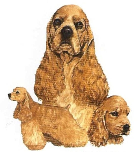 COCKER SPANIEL (Buff Color) Multi - Dogs. Twelve IDENTICAL 6 inch Fabric Squares for Quilting and Sewing